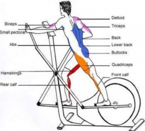 Benefits of an Elliptical Trainer