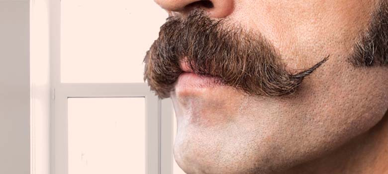 6 Details Individuals Do Not Understand About The Mustache